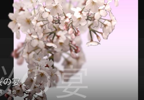 アンサンブル編曲バージョンをアップしました。Sakura No Utage / Tatsuya Dejima (桜の宴 / 出嶌達也)ensemble version sample clip